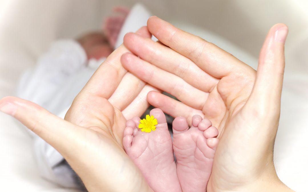 Rosebud Newborn Parent & Child Registration Still Open